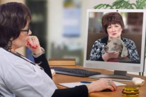Milwaukee professional license defense lawyer, telehealth, telemedicine, medical licensing issues, veterinarian telemedicine practices